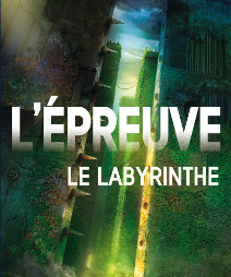 <i>L'Épreuve, T.1 : Le Labyrinthe</i> <h6>James Dashner